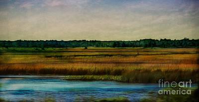 River Of Grass Art Print by Judi Bagwell