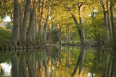 River Reflections Art Print by Paul Huchton