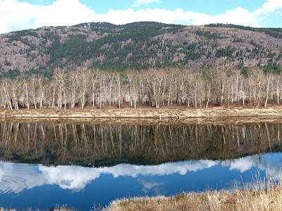 North Thompson Photograph - River Reflections by Will Borden