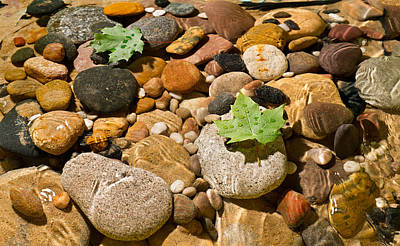 River Stones Original by Steve Gadomski