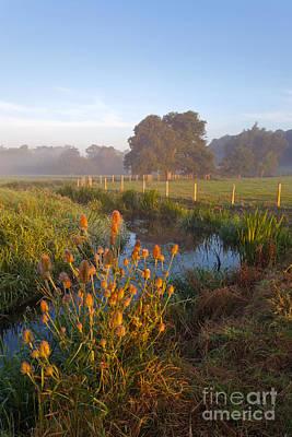 Farnham Photograph - River Wey Sunrise by Richard Thomas