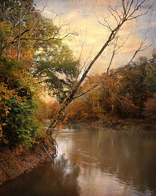 Photograph - Riverbank 1 by Jai Johnson