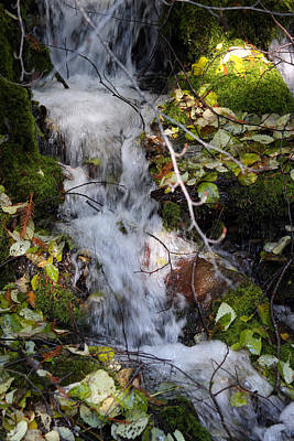 Photograph - Rivers - Streams - Creeks - 0023 by S and S Photo