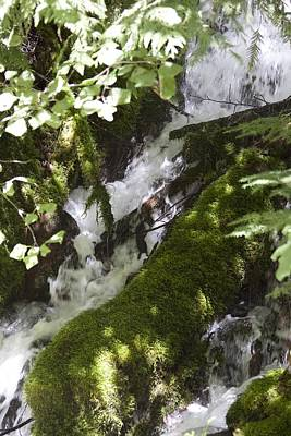 Photograph - Rivers-streams-creeks - 0042 by S and S Photo