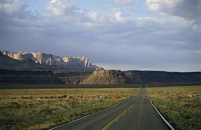 Road In Arizona Print by David Edwards