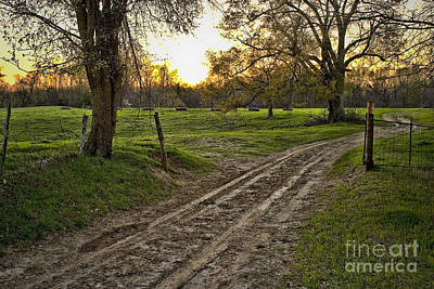 Photograph - Road Less Traveled by Cris Hayes