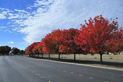 Road To Fall Colors Art Print by Richard Leon