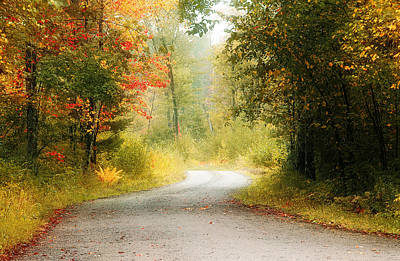 Fall Road Photograph - Road To Fall by William Carroll