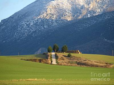 Wheat Chain Photograph - Road To The Mountain by Alfredo Rodriguez