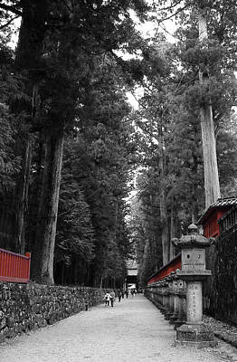 Samurai Photograph - Road To The Temple by Naxart Studio