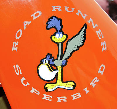 Roadrunner Print by Guy Whiteley