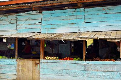 Photograph - Roadside Fruit Stand- Belize by Li Newton