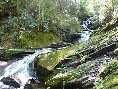 Photograph - Roaring Creek Falls - I by Joel Deutsch