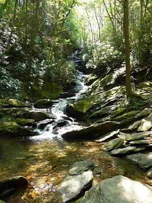 Photograph - Roaring Creek Falls - II by Joel Deutsch