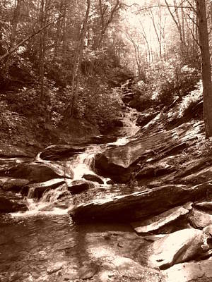 Photograph - Roaring Creek Falls - Sepia by Joel Deutsch