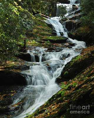 Art Print featuring the photograph Roaring Fork Falls by Deborah Smith