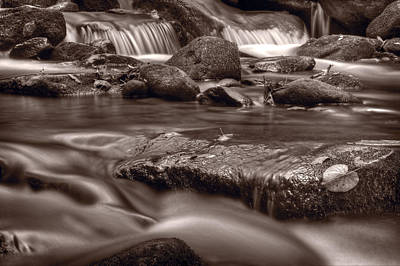 Roaring Fork Great Smokey Mountains Bw Art Print