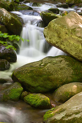 Art Print featuring the photograph Roaring Forks by Cindy Haggerty