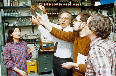 University Of Maryland Photograph - Robert Gallo And Colleagues by Science Source