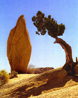 Digital Art - Rock And Tree by Timothy Bulone