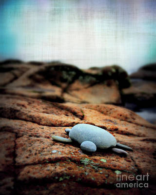 Minnesota Grown Photograph - Rock Art by Perry Webster