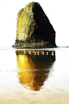 Rock At Silver Point Oregon Art Print by Steven A Bash