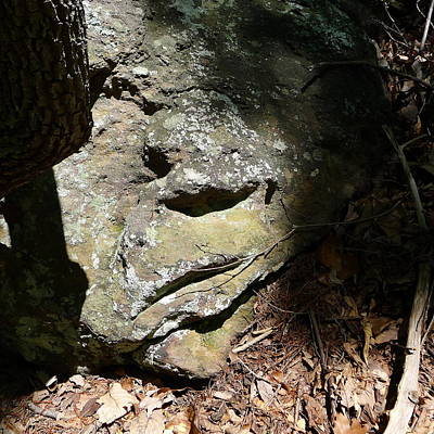 Gaston County Photograph - Rock Face by Joel Deutsch