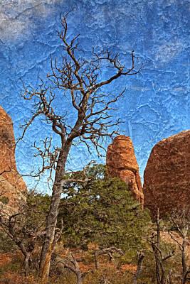 Photograph - Rock Garden Skeleton Arches National Park by John Stephens