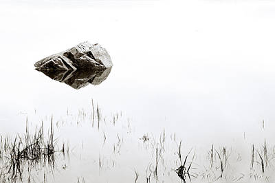 Pond Photograph - Rock In The Water by Steve Gadomski