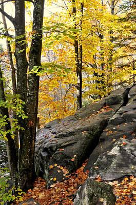 Photograph - Rock Outcrop by Douglas Pike