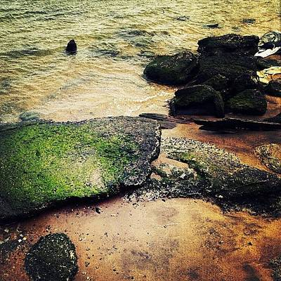Rock Photograph - Rocks Upon The Shore by Natasha Marco