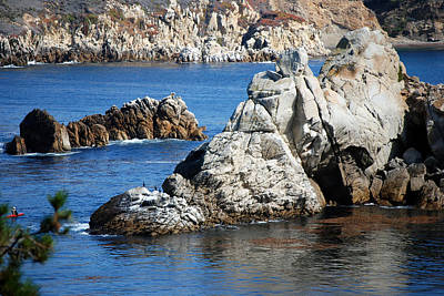 Photograph - Rocky Cove by Harvey Barrison