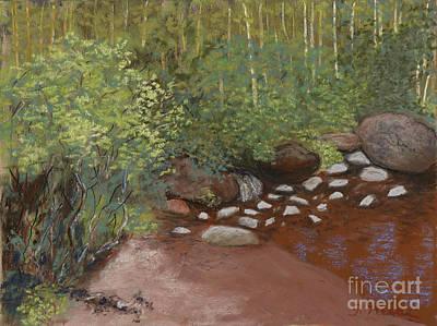 Rocky Mountain Creek Art Print by Ginny Neece