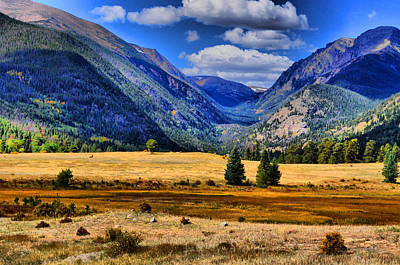 Photograph - Rocky Mountain by Emily Stauring