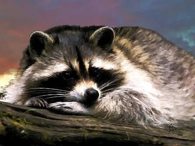 Rocky Raccoon Art Print by Robert Smith
