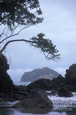 Photograph - Rocky Shore Manuel Antonio Park Costa Rica by John  Mitchell
