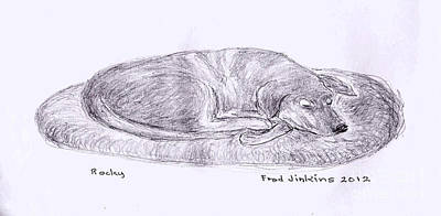Dog Rescue Mixed Media - Rocky Sleeping by Fred Jinkins