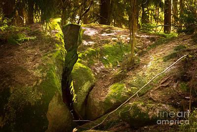 Photograph - Rocky Woodland by Lutz Baar