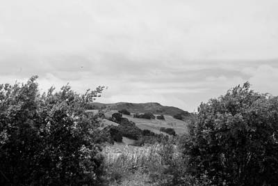 Photograph - Rolling Hills View II - Bw by Kathleen Grace