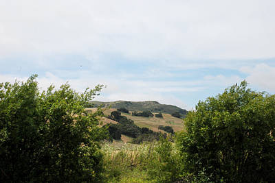 Photograph - Rolling Hills View II by Kathleen Grace