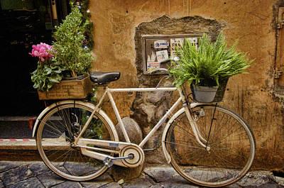 Photograph - Roman Delivery by Nancy Morgantini