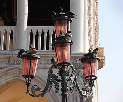 Street Lamps Digital Art - Roman Pigeons by Bill Cannon