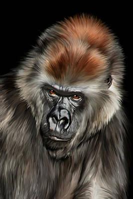 Ape Digital Art - Romina by Julie L Hoddinott