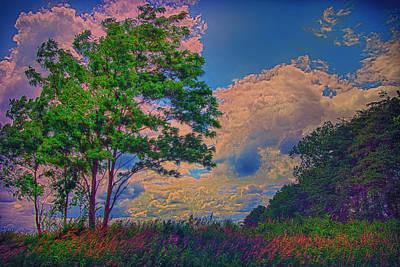 Charles Digital Art - Romp Through A Colorful Field by Bill Tiepelman