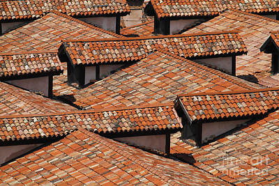 Photograph - Rooftops Of Venice by Dennis Hedberg