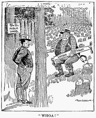 Roosevelt Cartoon, 1900s Art Print by Granger