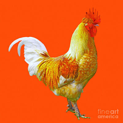 Rooster Digital Art - Rooster 3 - Painterly by Wingsdomain Art and Photography