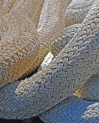 Photograph - Rope by Lisa Phillips