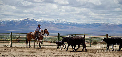 Ranch Life Photograph - Ropin In God's Country by Megan Chambers