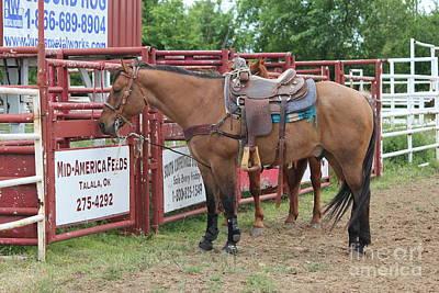 Roping Horse Art Print